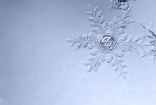 Photo of snowflakes close-up