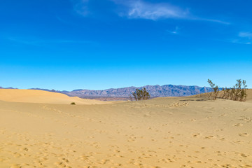Desert in Arizona, US