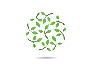 Eco vector icon