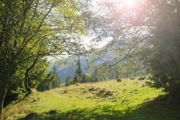 Mountain landscape with sun lens