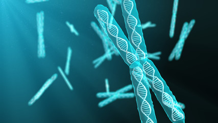 A chromosome is a DNA molecule with part or all of the genetic material of an organism