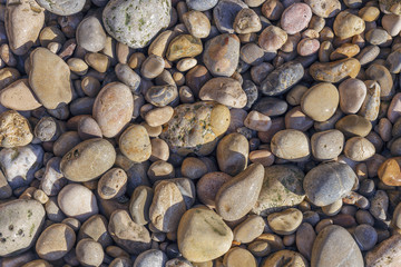 colored small sea pebbles on a rocky beach closeup