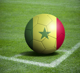 Soccer ball ball with the national flag of SENEGAL ball with stadium