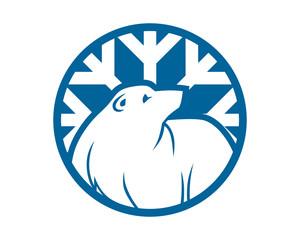 blue winter bear grizzly polar beast animal fauna image vector icon logo silhouette
