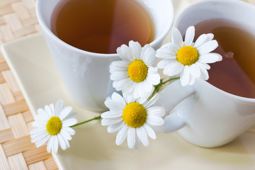 homemade remedy - herbal camomile tea (matricaria chamomilla) - health care and medical treatment