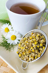 homemade remedy - herbal camomile tea (matricaria chamomilla) - health care and medical treatment