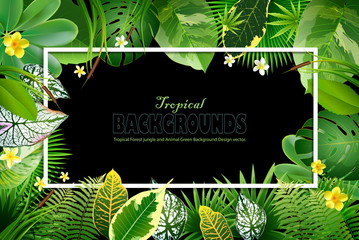 Bright natuer background with jungle plants. tropical leaves.
