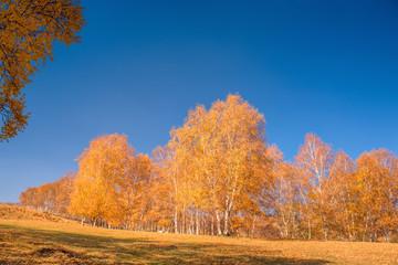 Utah, usa. Landscape.