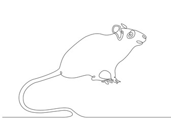 continuous line drawing rat mouse