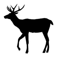 decoration, elegance, horned, object, shadow, buck, doe, big, vintage, cervus, cute, dappled, engraving, graceful, hoofed, mature, muzzle, powerful