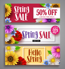Spring sale vector banner set with colorful background templates, frames and various daisy flowers for spring seasonal discount marketing and background designs. Vector illustration.