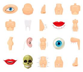 Human body icon set, cartoon style