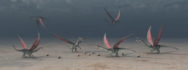 Ansammlung von Drachen