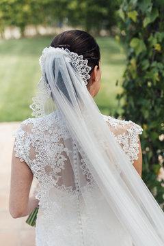 Back view of bride wearing veil