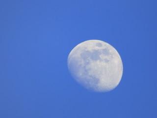 Luna, el único satélite natural de la Tierra vista en un dia claro