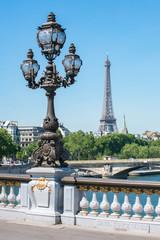 Wall Mural - Eiffelturm und Pont Alexandre in Paris, Frankreich