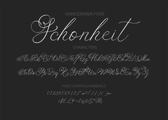 Modern calligraphic font. Brush painted letters.