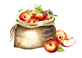 Sack of apples.. Watercolor hand drawn illustration, isolated on white background