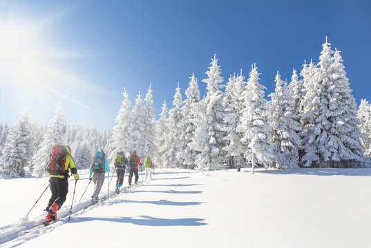 Group of backcountry skiers going up towards a snow covered chri