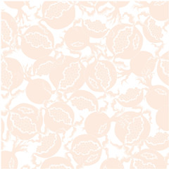 Soft fruit design element . Beige  slice of pomegranate on a  white background.