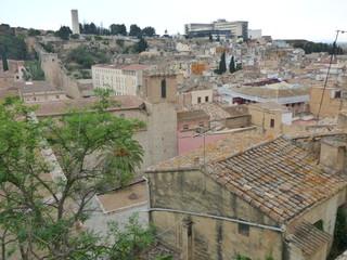 Tortosa es la capital de la comarca del Bajo Ebro, situada en la provincia de Tarragona, Cataluña. Es sede episcopal y constituye un importante centro agrícola, comercial e industrial