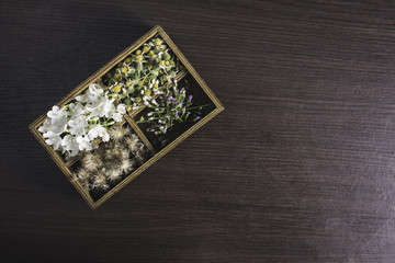 Flowers in box on wood background.