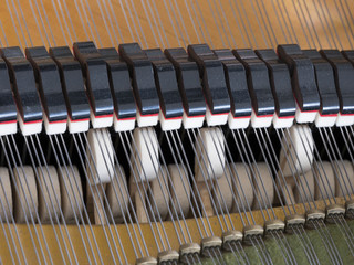 abstract look into the inside of a bechstein grand piano