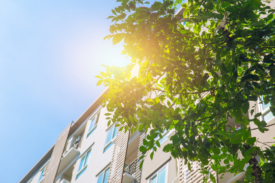 Green community Eco apartment building saving energy and fresh air concept