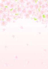 サクラの花のアーチ 花吹雪 イラスト