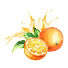 Orange juice splash. Watercolor hand drawn illustration, isolated on white background