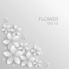 Vector white Paper flowers background