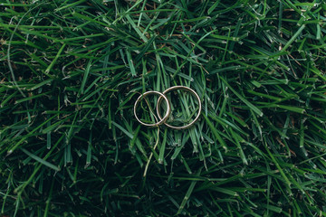 Golden rings of newlyweds on the grass.