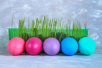 Colored easter eggs with green grass on a gray concrete background.