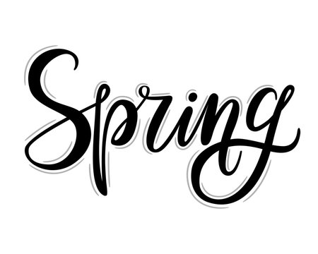 Spring lettering. Hand drawn calligraphy, white background. Vector illustration