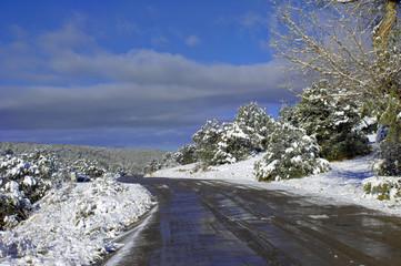 Backroad on Sandia Mountainside