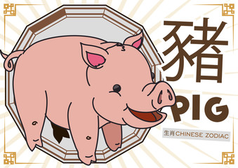 Cute Pig in Cartoon Style for Chinese Zodiac, Vector Illustration