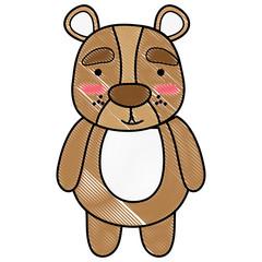 In de dag Beren grated cute and surprised bear wild animal