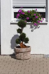 rural countryside house facades with garden decoration