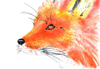 Lovely forest resident red fox. Watercolor illustration.