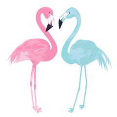 Watercolor couple flamingos on white background. Vector illustration