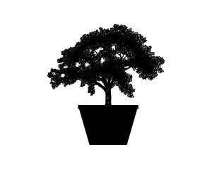 Decorative Plants - Black Bonsai with Pot Illustration Silhouette Logo Symbol Vector
