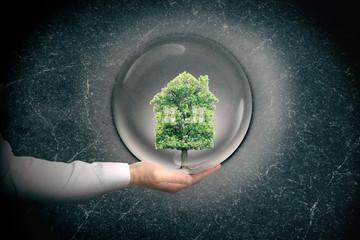 arbre écologie