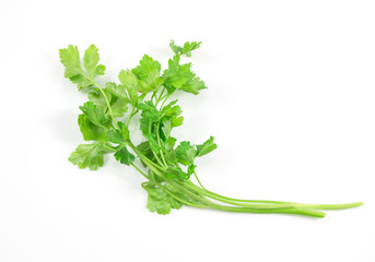 Fresh green parsley, herbs isolated on a white background with a clipping path.