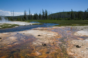 Geothermal Features of Yellowstone National Park