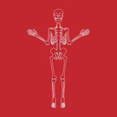 Human bones skeleton silhouette collection set. High detailed illustration. line icon