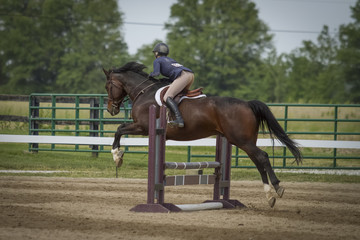 Rear view of woman and horse jumping