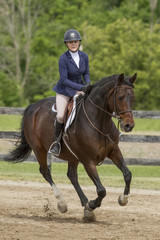 Bay horse and female rider at a canter