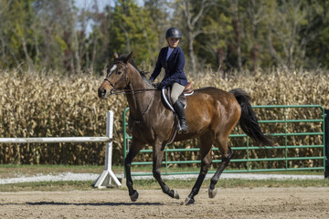 Woman and bay galloping at a fall horse show