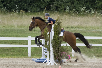 Bay and Female rider jumping liverpool