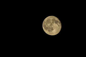 Luna gialla quasi piena
